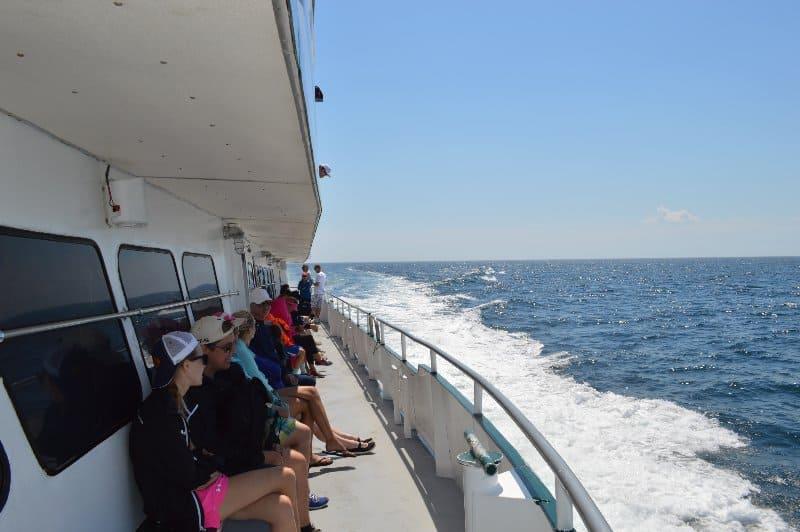 whalewatchboatdeck